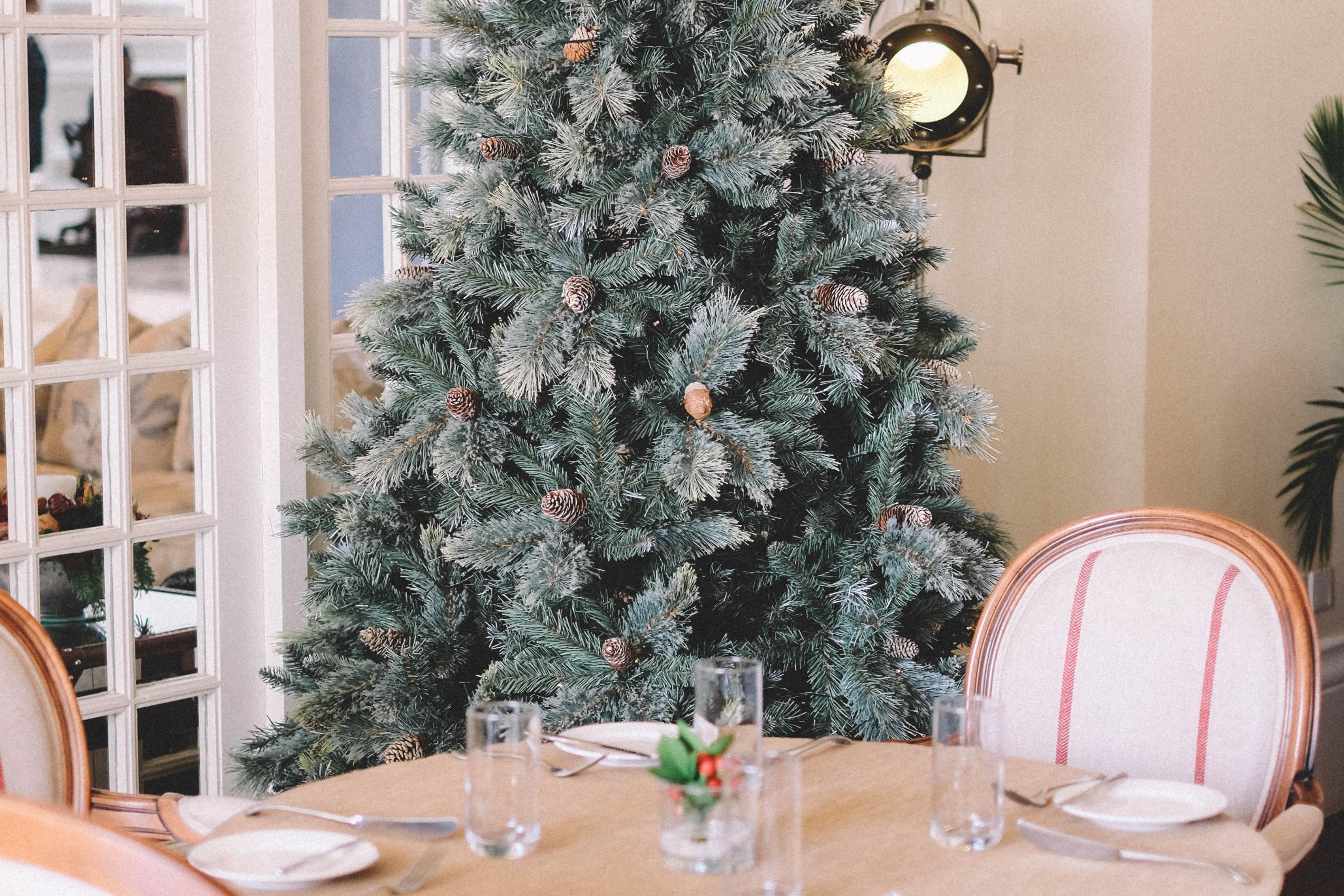 Easy and Stylish Holiday Decorating Ideas